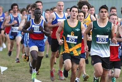 NSW All Schools Cross Country Championships